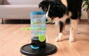 idea regalo per cani, torre interattiva