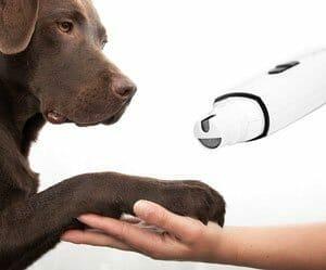 tagliaunghie elettrico per cani