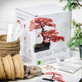Kit per bonsai