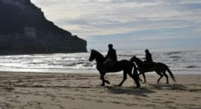 esperienza regalo montare un cavallo