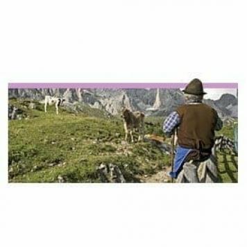un giorno da pastore idea regalo
